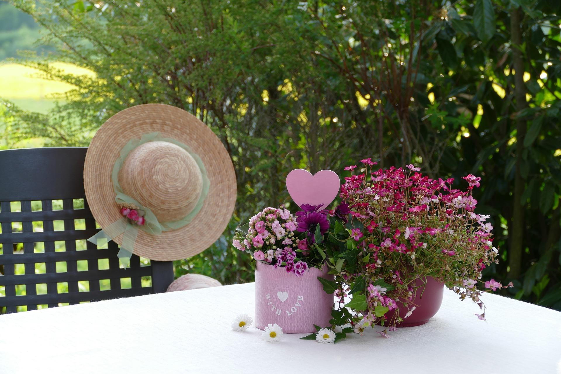 Kwiaty doniczkowe nawozy